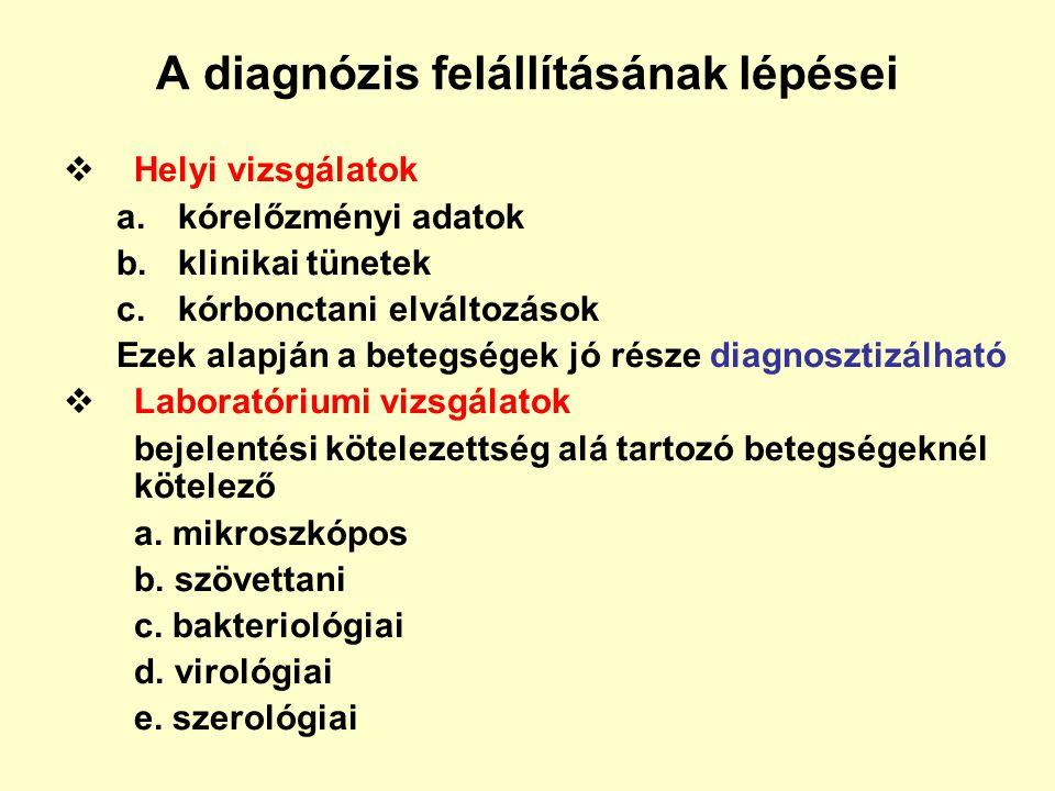 A diagnózis felállításának lépései