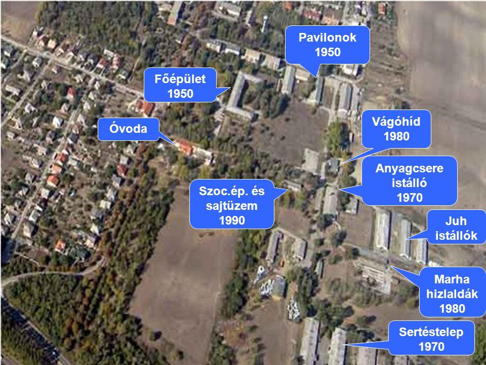 Pavilonok 1950 Főépület 1950. Vágóhíd. 1980. Óvoda. Anyagcsere istálló. 1970. Szoc.ép. és sajtüzem 1990.