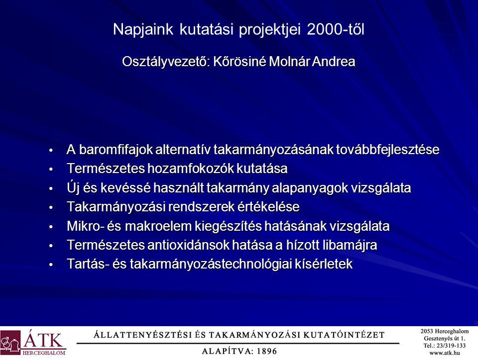 Napjaink kutatási projektjei 2000-től