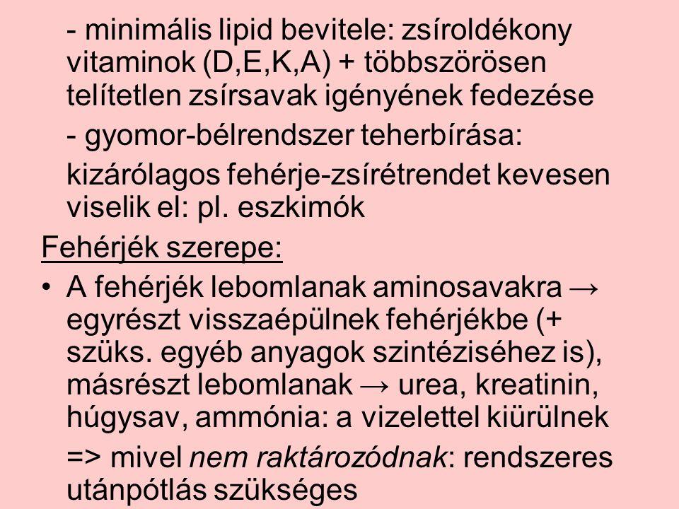 - minimális lipid bevitele: zsíroldékony vitaminok (D,E,K,A) + többszörösen telítetlen zsírsavak igényének fedezése