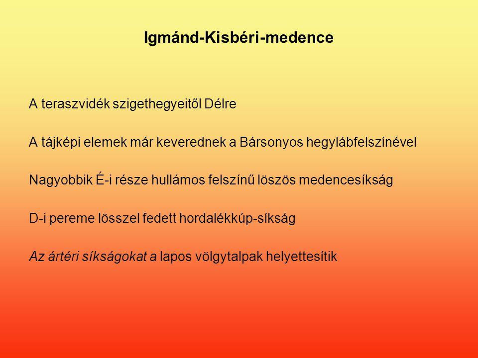 Igmánd-Kisbéri-medence