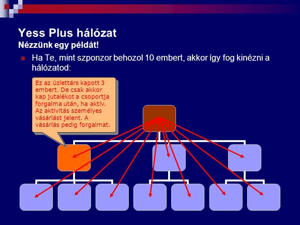 Yess Plus hálózat Nézzünk egy példát!