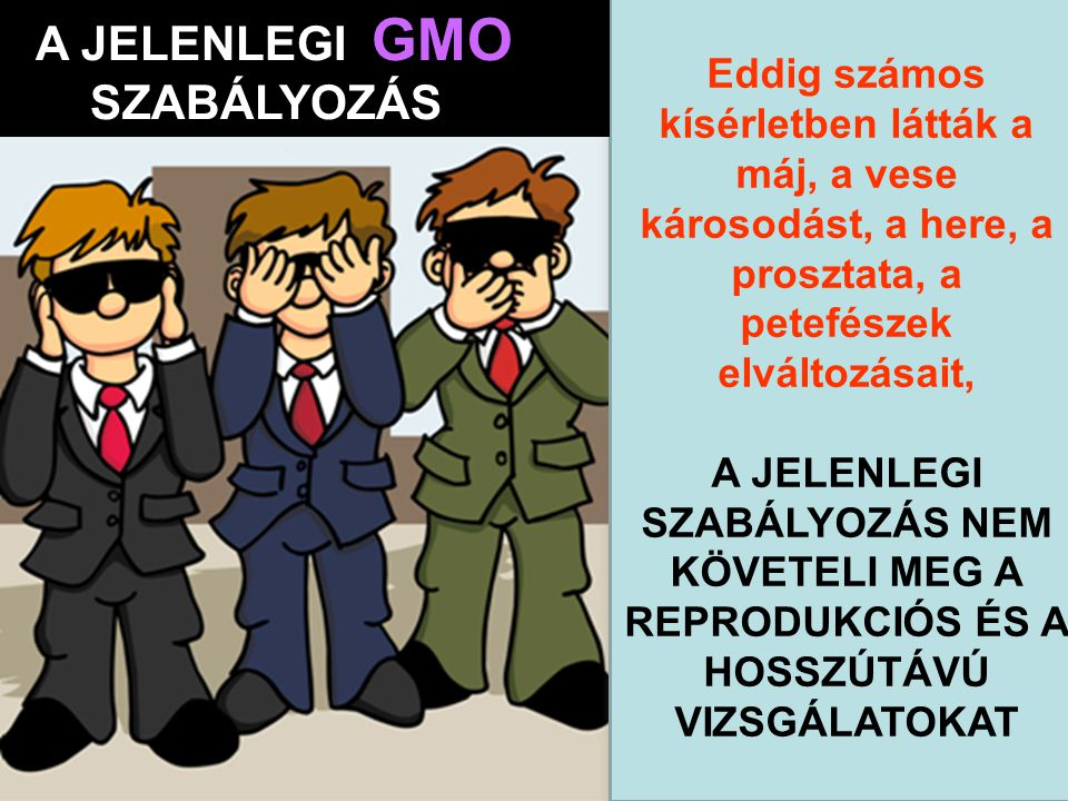 A JELENLEGI GMO SZABÁLYOZÁS