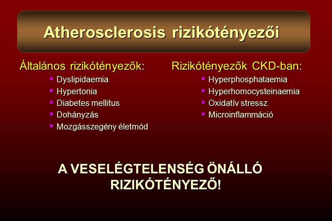 Atherosclerosis rizikótényezői A VESELÉGTELENSÉG ÖNÁLLÓ RIZIKÓTÉNYEZŐ!