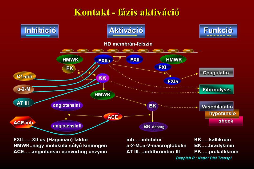 Kontakt - fázis aktiváció