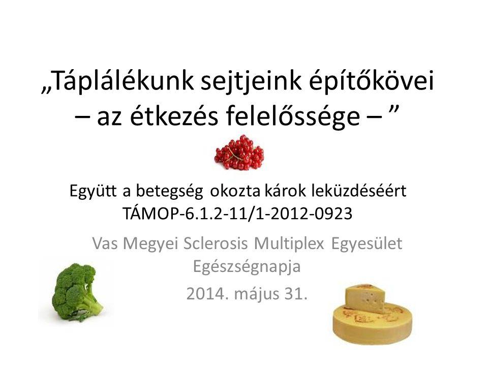 Vas Megyei Sclerosis Multiplex Egyesület Egészségnapja 2014. május 31.