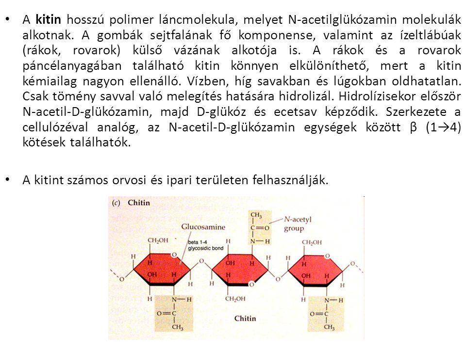 A kitin hosszú polimer láncmolekula, melyet N-acetilglükózamin molekulák alkotnak. A gombák sejtfalának fő komponense, valamint az ízeltlábúak (rákok, rovarok) külső vázának alkotója is. A rákok és a rovarok páncélanyagában található kitin könnyen elkülöníthető, mert a kitin kémiailag nagyon ellenálló. Vízben, híg savakban és lúgokban oldhatatlan. Csak tömény savval való melegítés hatására hidrolizál. Hidrolízisekor először N-acetil-D-glükózamin, majd D-glükóz és ecetsav képződik. Szerkezete a cellulózéval analóg, az N-acetil-D-glükózamin egységek között β (1→4) kötések találhatók.