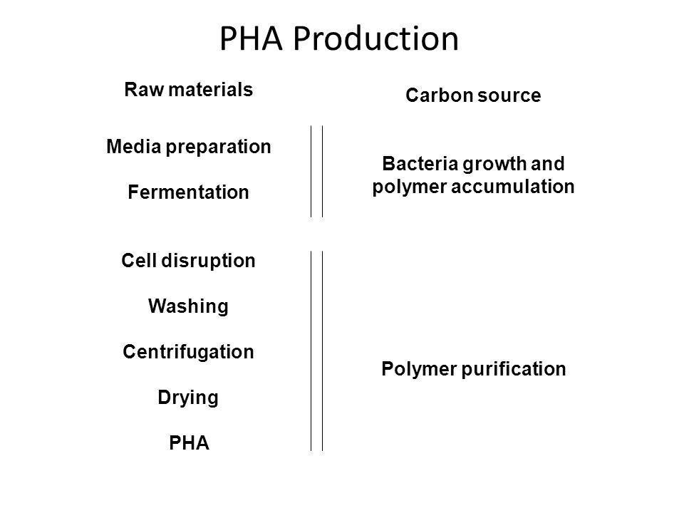 Bacteria growth and polymer accumulation