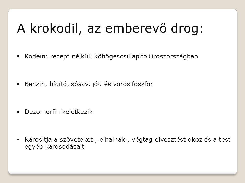 A krokodil, az emberevő drog: