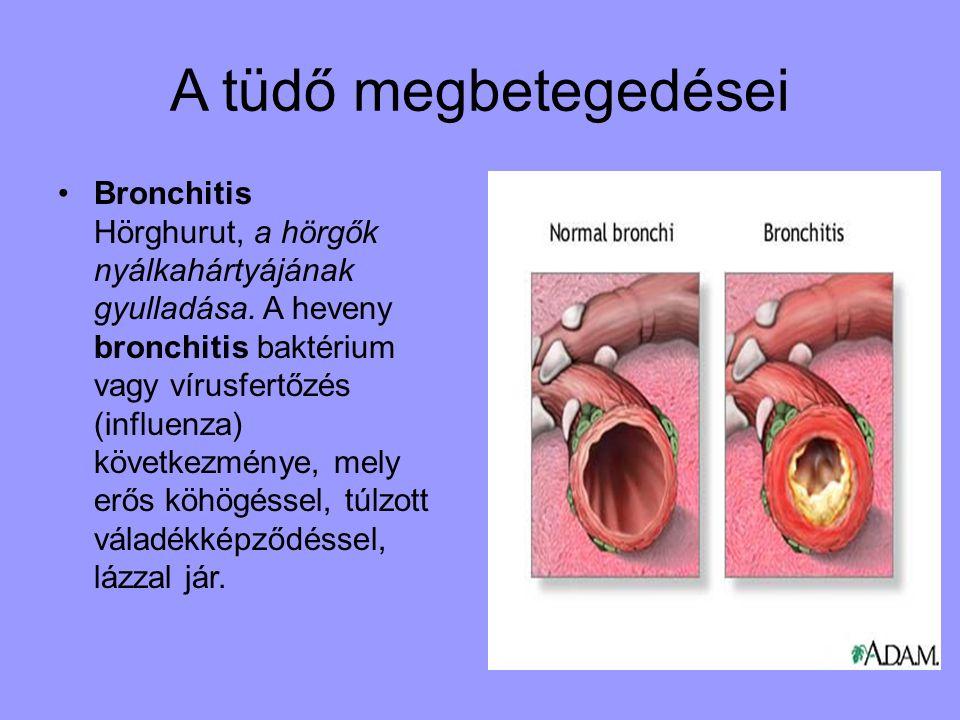 A tüdő megbetegedései