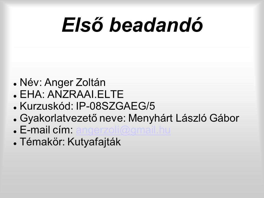 Első beadandó Név: Anger Zoltán EHA: ANZRAAI.ELTE