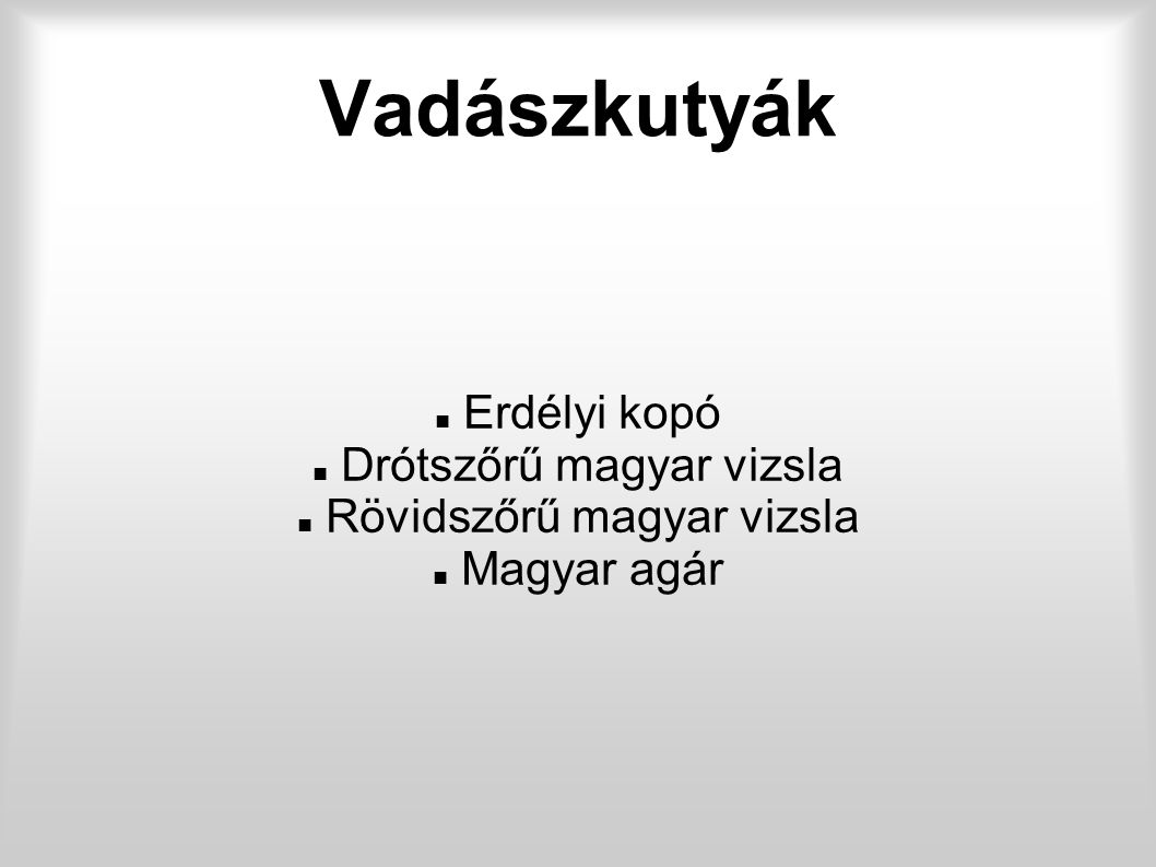 Vadászkutyák Erdélyi kopó Drótszőrű magyar vizsla
