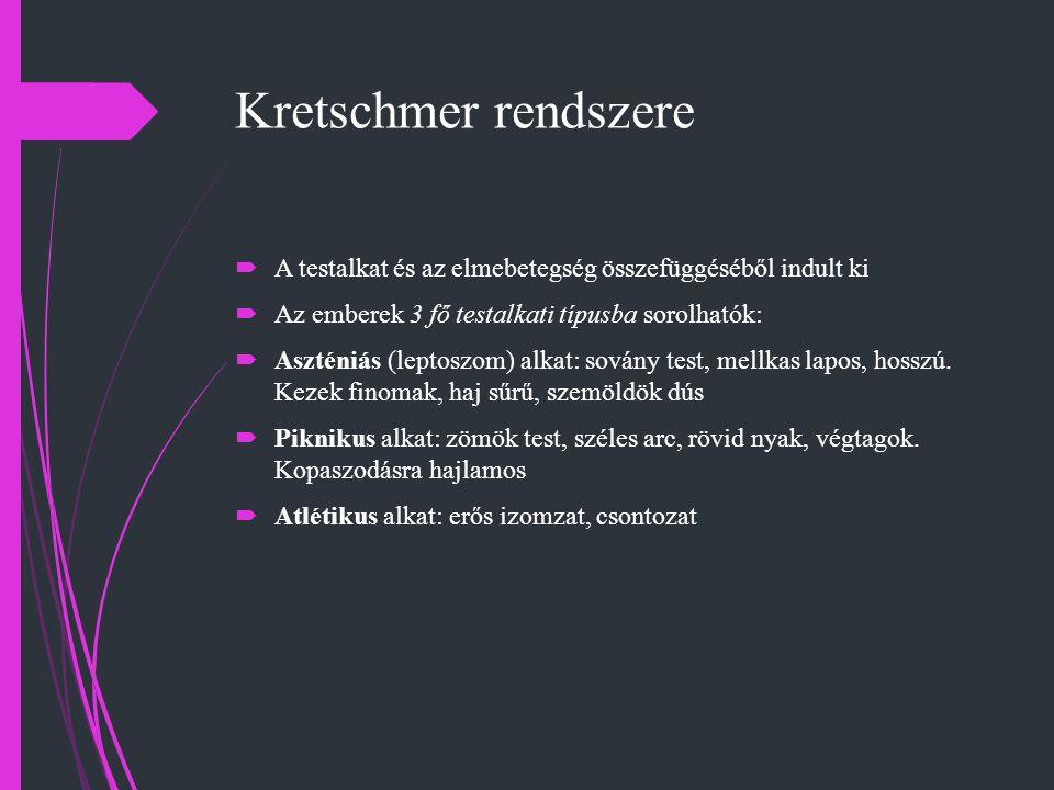 Kretschmer rendszere A testalkat és az elmebetegség összefüggéséből indult ki. Az emberek 3 fő testalkati típusba sorolhatók: