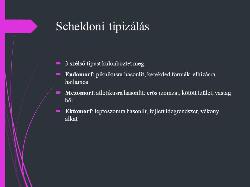 Scheldoni tipizálás 3 szélső típust különböztet meg: