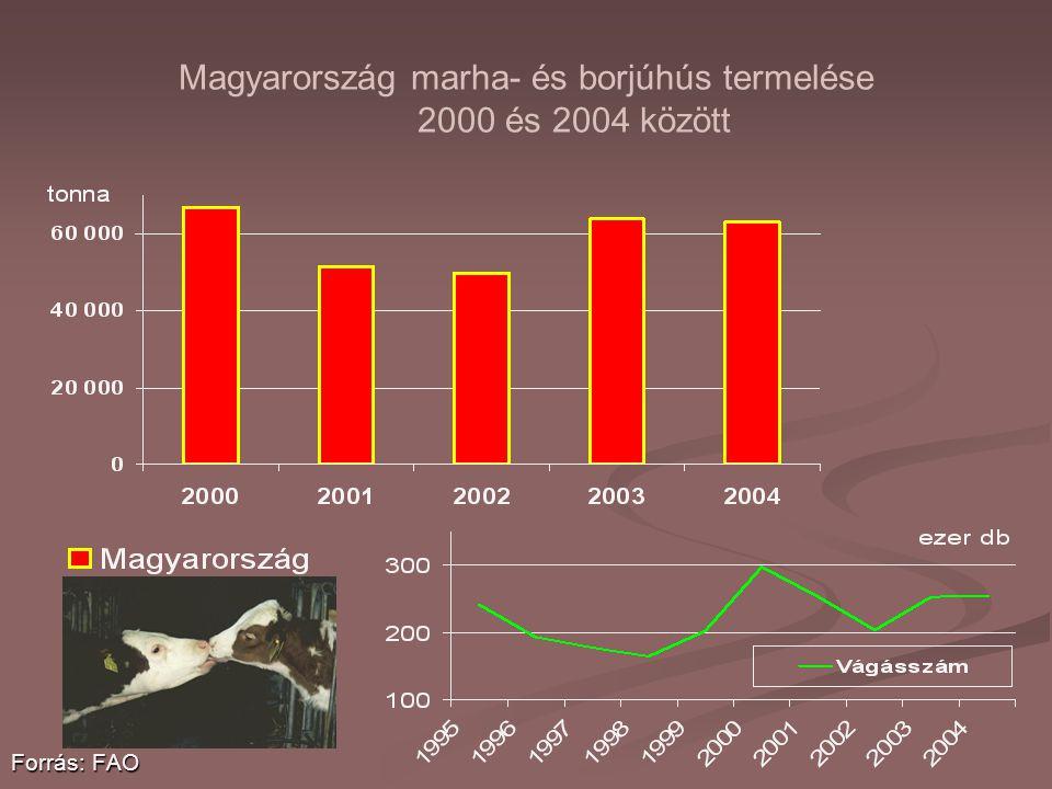 Magyarország marha- és borjúhús termelése 2000 és 2004 között