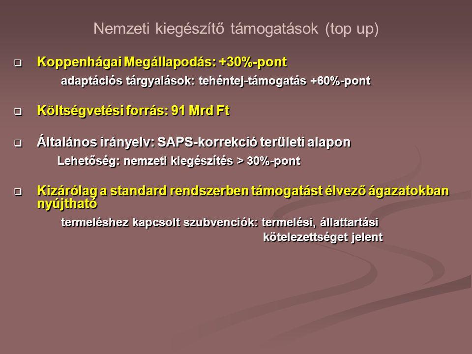 Nemzeti kiegészítő támogatások (top up)