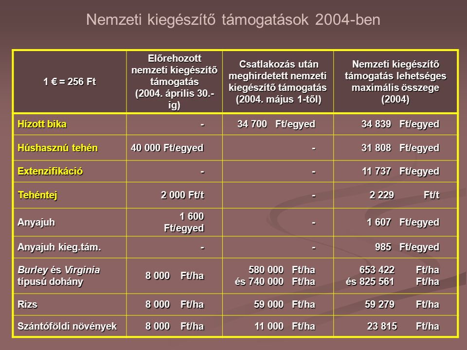 Nemzeti kiegészítő támogatások 2004-ben