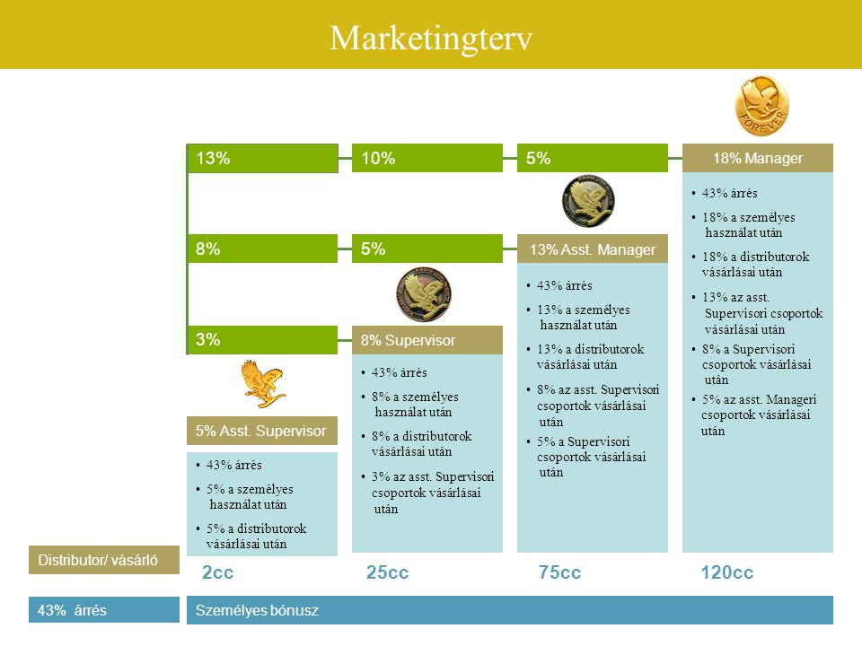 Marketingterv 2cc 25cc 75cc 120cc 13% 10% 5% 8% 5% 3% 18% Manager