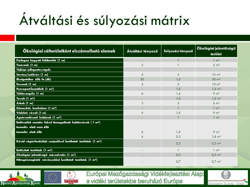 Átváltási és súlyozási mátrix