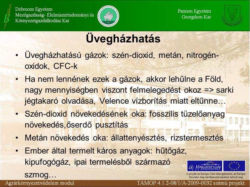 Üvegházhatás Üvegházhatású gázok: szén-dioxid, metán, nitrogén-oxidok, CFC-k.