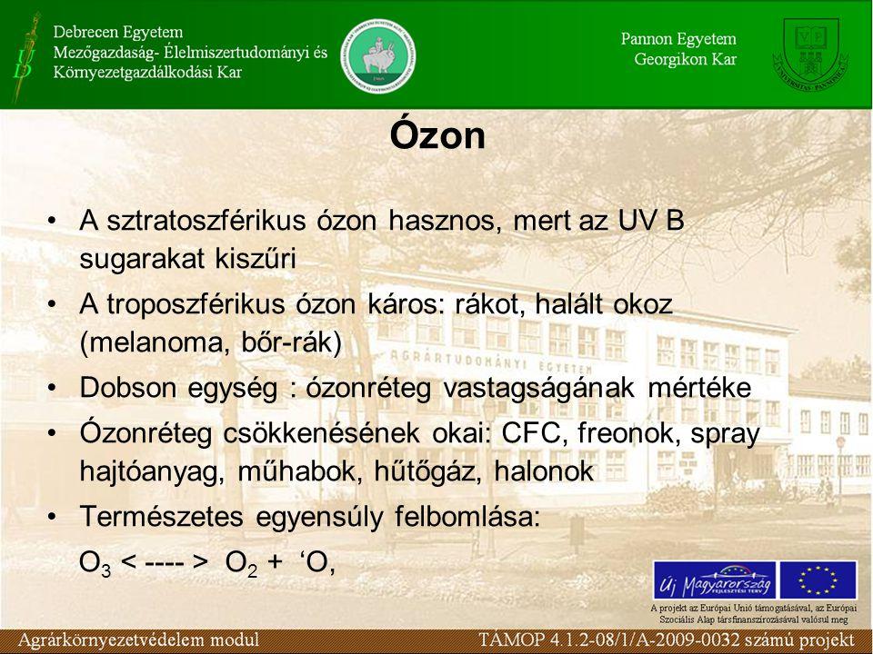 Ózon A sztratoszférikus ózon hasznos, mert az UV B sugarakat kiszűri