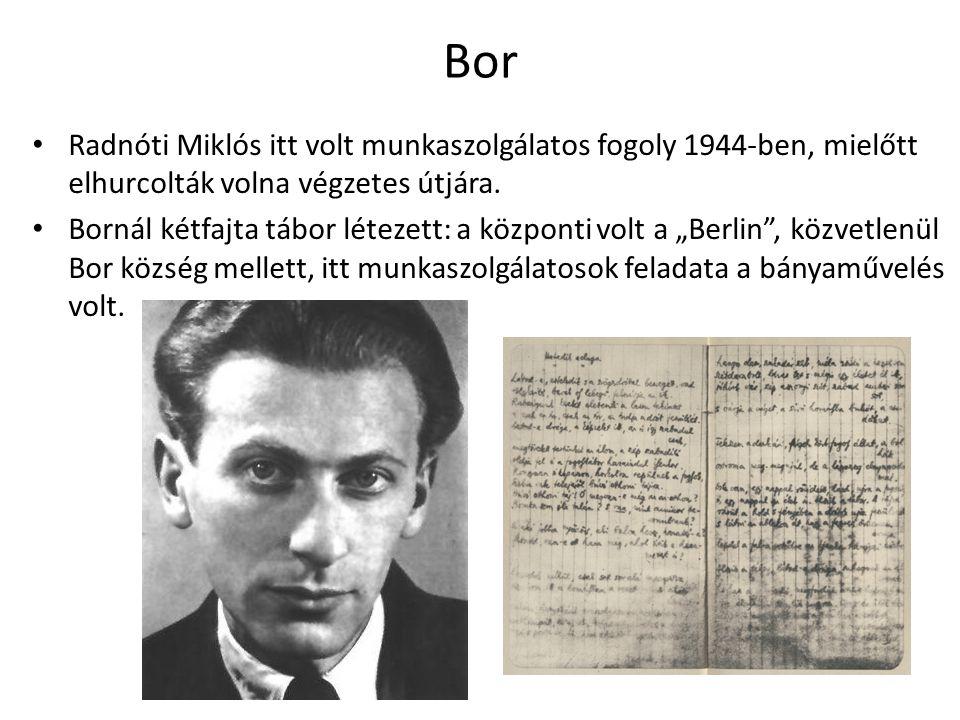 Bor Radnóti Miklós itt volt munkaszolgálatos fogoly 1944-ben, mielőtt elhurcolták volna végzetes útjára.