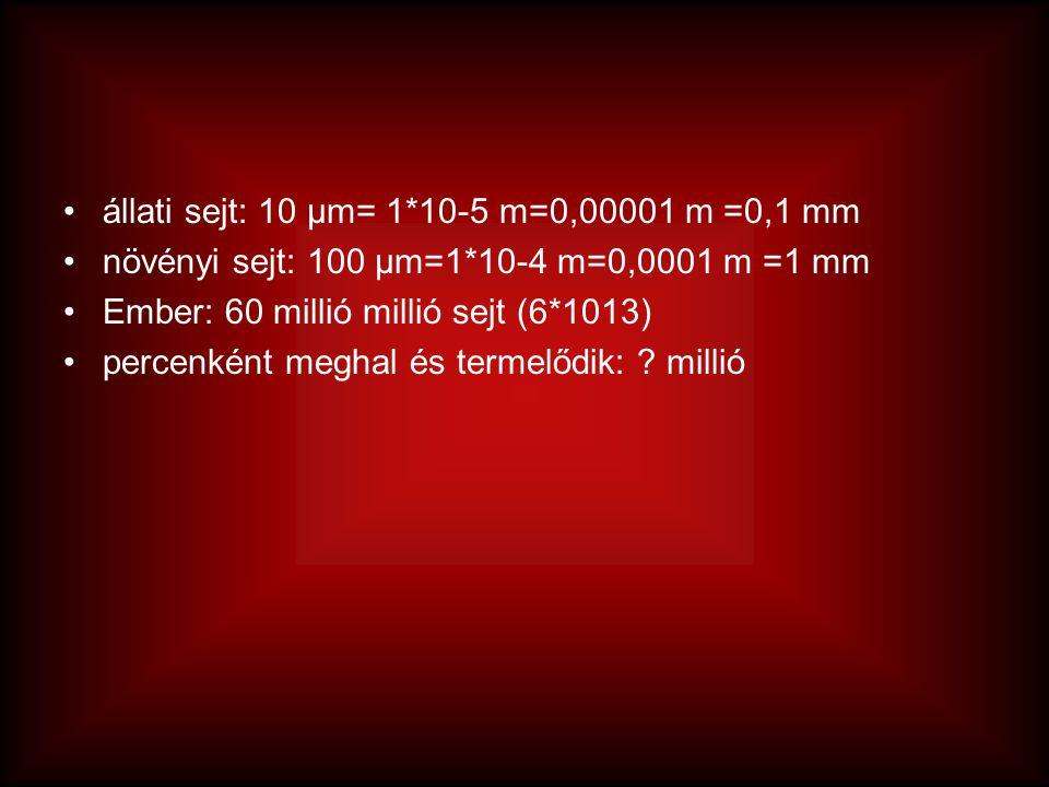 állati sejt: 10 μm= 1*10-5 m=0,00001 m =0,1 mm