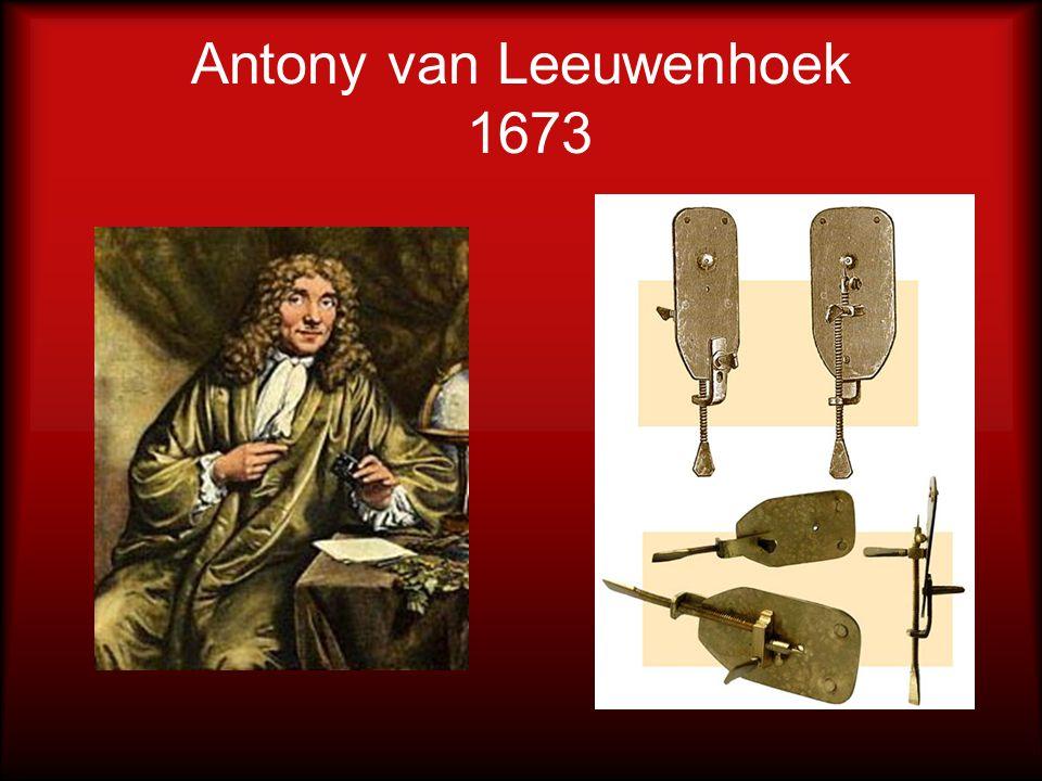 Antony van Leeuwenhoek 1673