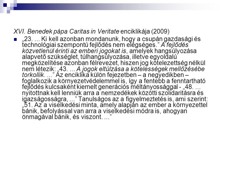 XVI. Benedek pápa Caritas in Veritate enciklikája (2009)
