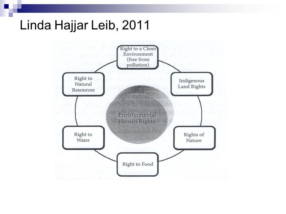 Linda Hajjar Leib, 2011