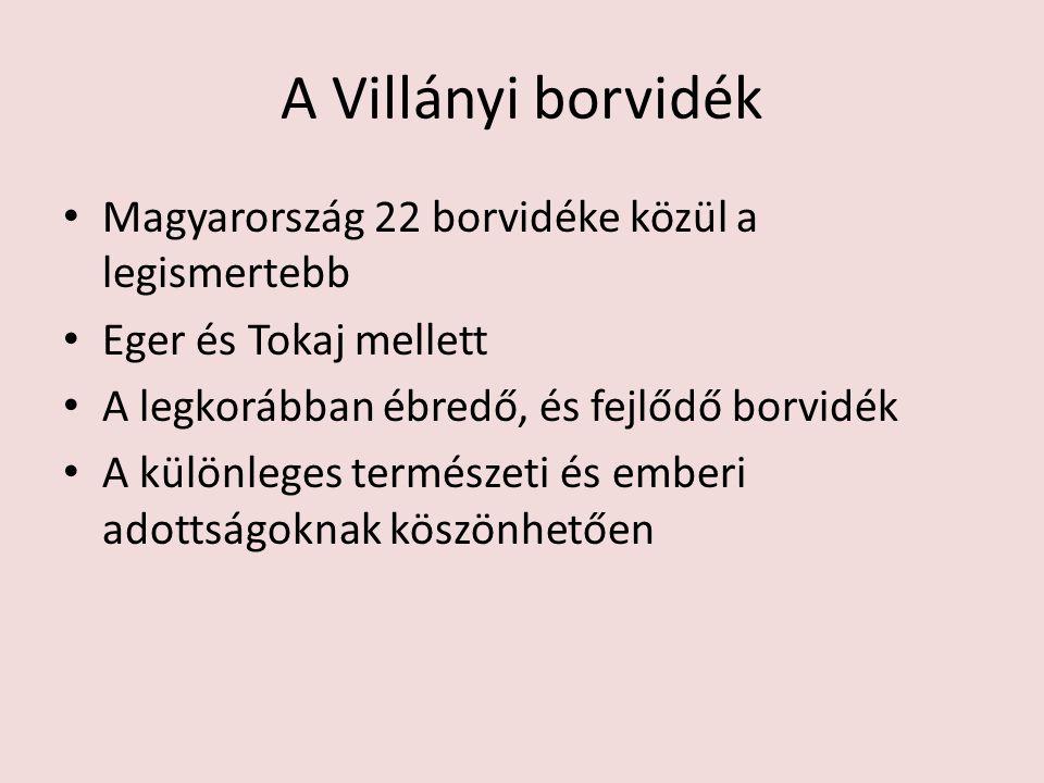 A Villányi borvidék Magyarország 22 borvidéke közül a legismertebb