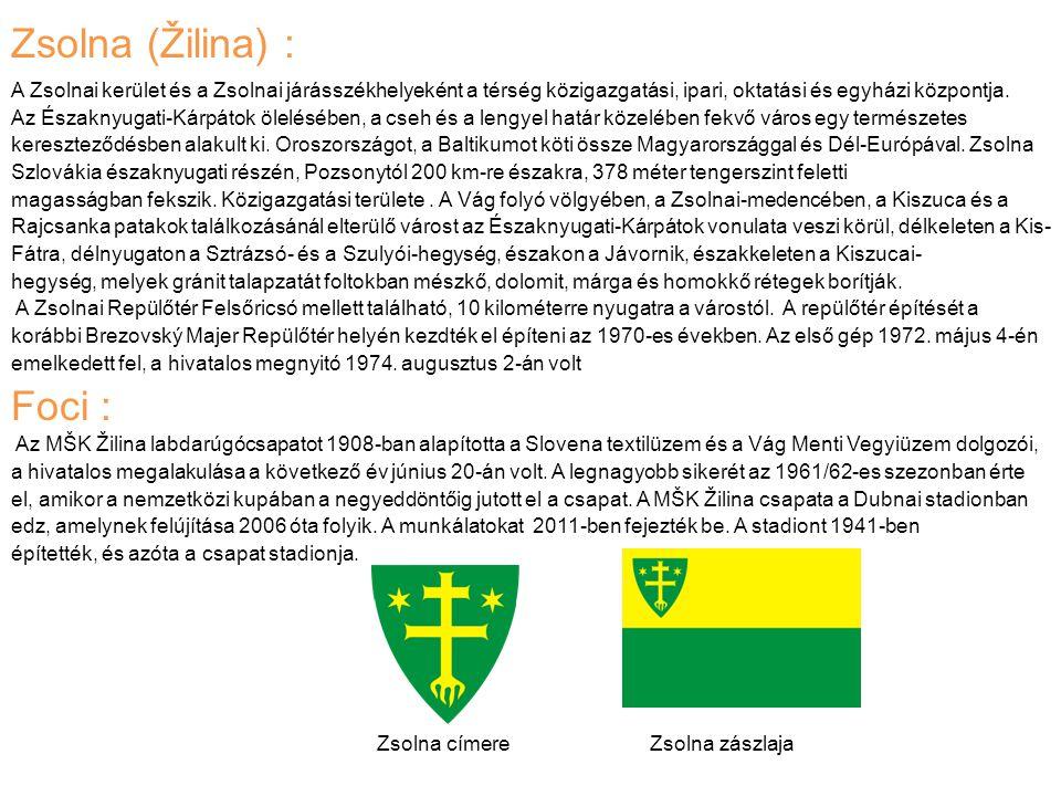 Zsolna (Žilina) : Foci :