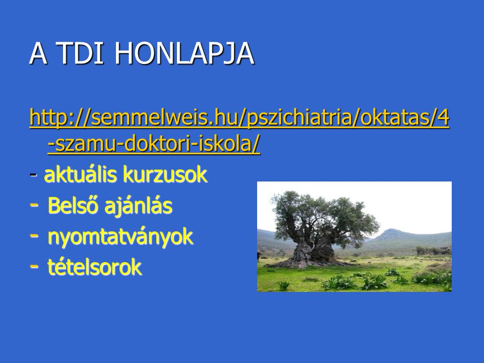 A TDI HONLAPJA http://semmelweis.hu/pszichiatria/oktatas/4-szamu-doktori-iskola/ - aktuális kurzusok.