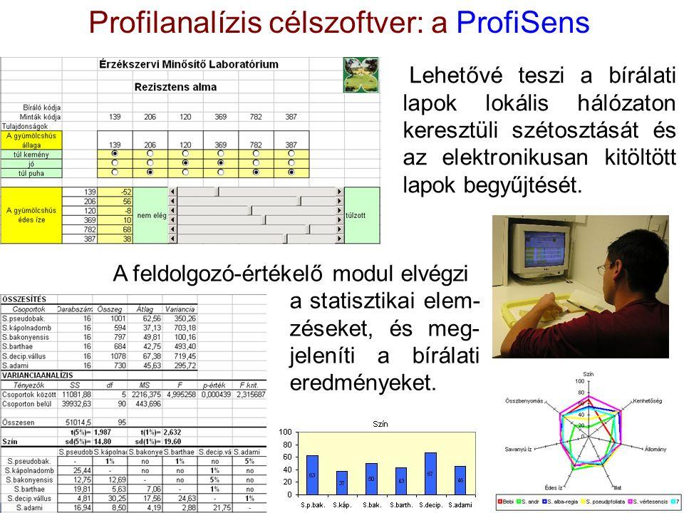 Profilanalízis célszoftver: a ProfiSens