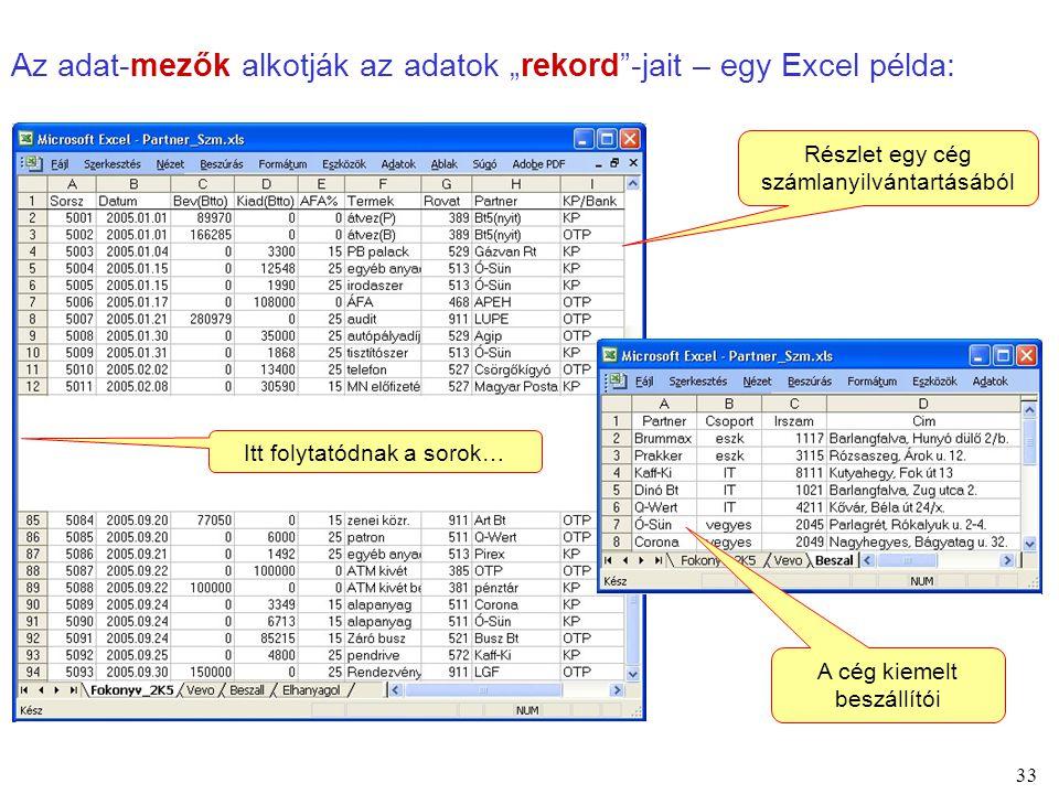 """Az adat-mezők alkotják az adatok """"rekord -jait – egy Excel példa:"""