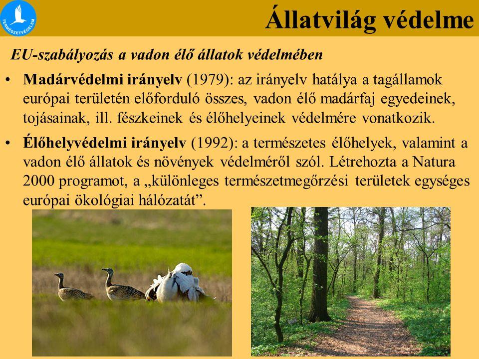 EU-szabályozás a vadon élő állatok védelmében