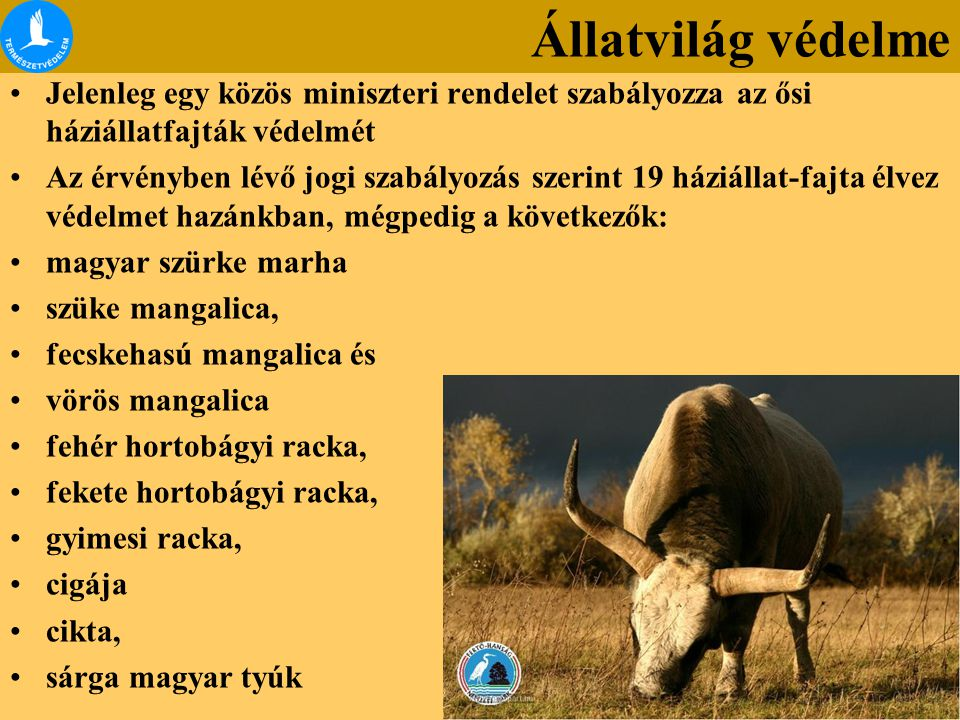 Állatvilág védelme Jelenleg egy közös miniszteri rendelet szabályozza az ősi háziállatfajták védelmét.