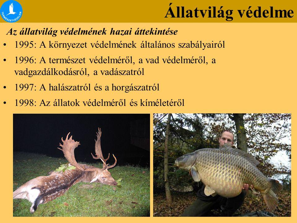 Az állatvilág védelmének hazai áttekintése