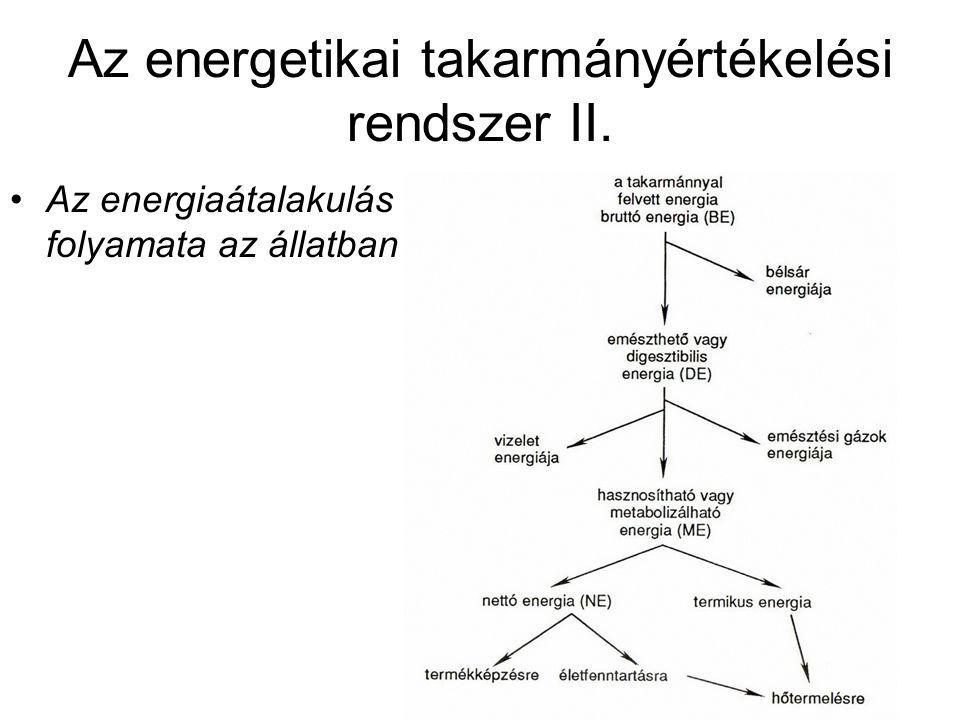 Az energetikai takarmányértékelési rendszer II.