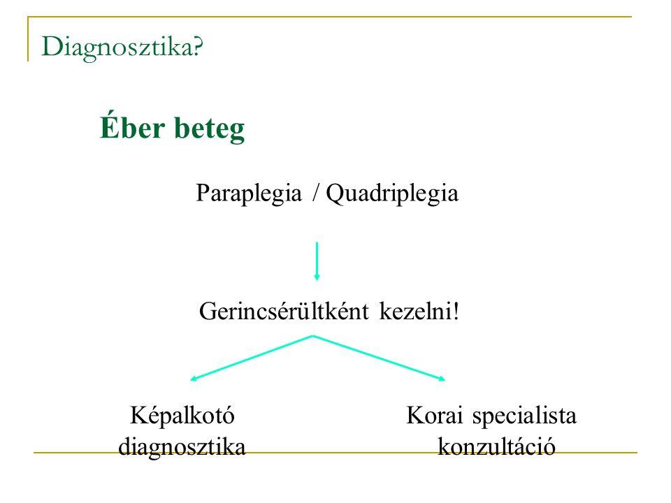 Éber beteg Diagnosztika Paraplegia / Quadriplegia
