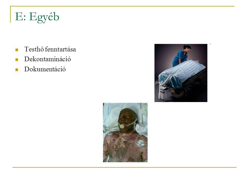 E: Egyéb Testhő fenntartása Dekontamináció Dokumentáció
