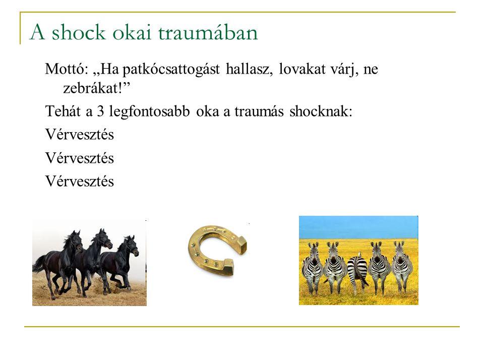 """A shock okai traumában Mottó: """"Ha patkócsattogást hallasz, lovakat várj, ne zebrákat! Tehát a 3 legfontosabb oka a traumás shocknak:"""