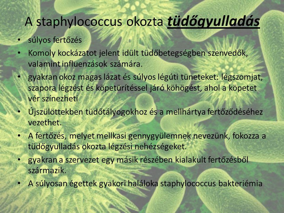 A staphylococcus okozta tüdőgyulladás