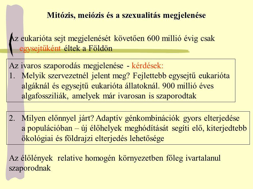 Mitózis, meiózis és a szexualitás megjelenése