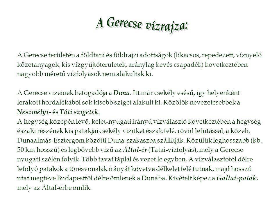 A Gerecse vízrajza: A Gerecse területén a földtani és földrajzi adottságok (likacsos, repedezett, víznyelő.