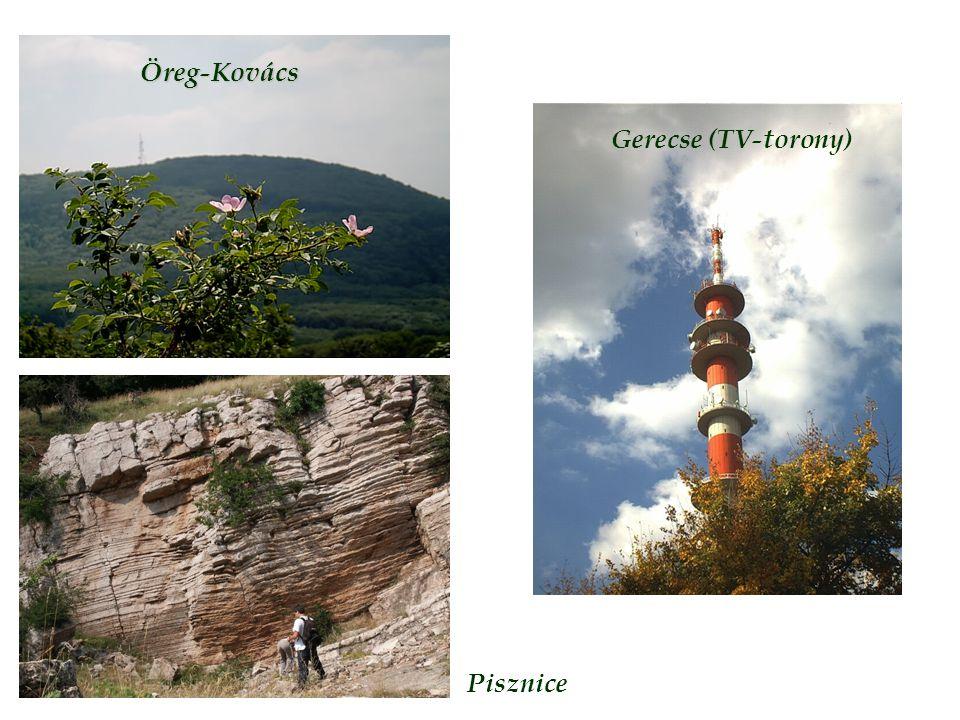 Öreg-Kovács Gerecse (TV-torony) Pisznice