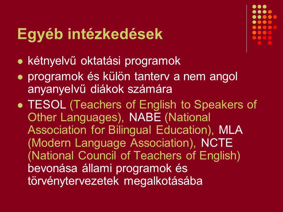 Egyéb intézkedések kétnyelvű oktatási programok