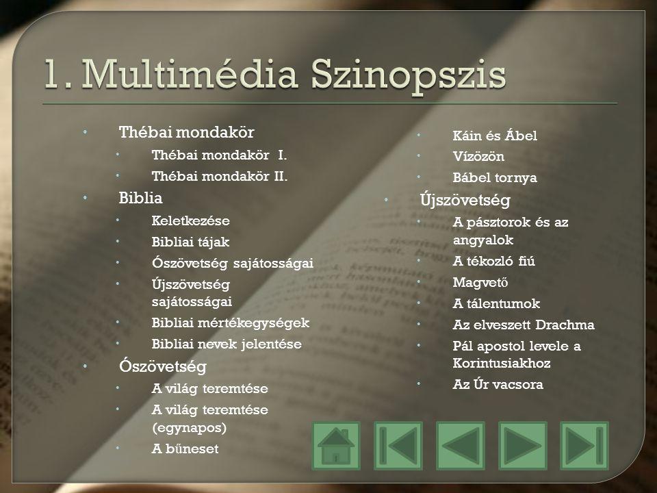 1. Multimédia Szinopszis