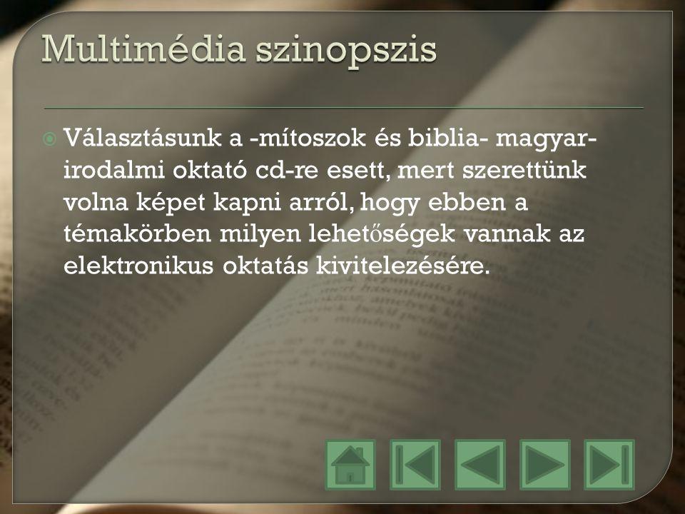 Multimédia szinopszis