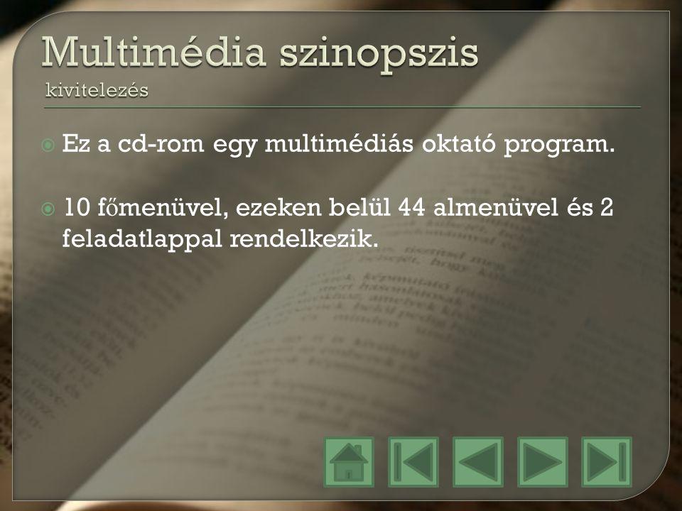 Multimédia szinopszis kivitelezés